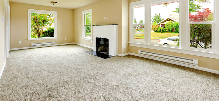 clean carpet in living room