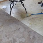 Living Room Carpet Before